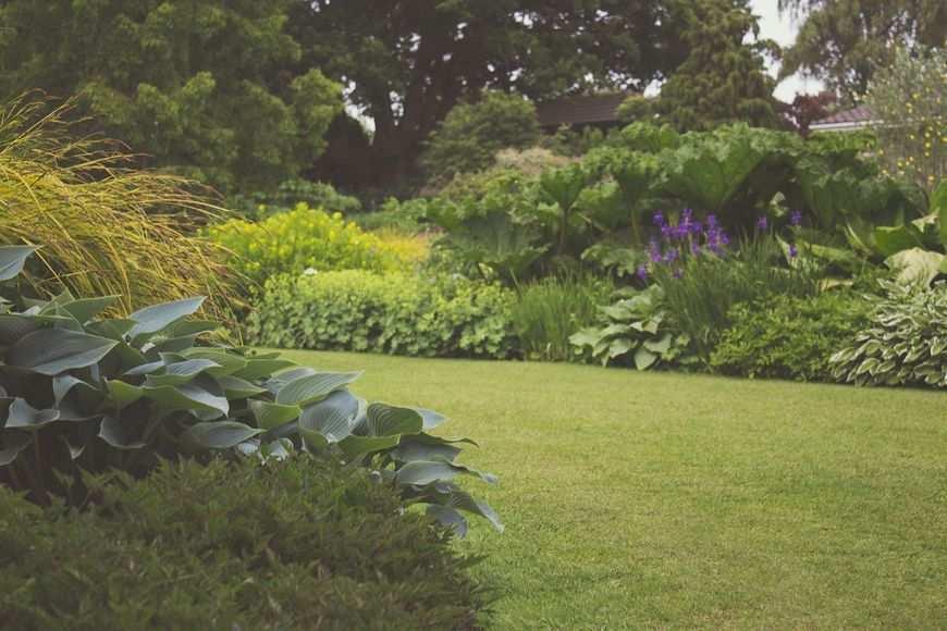 Profesjonalny system nawadniania ogrodów